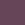 Viola ametista (1)