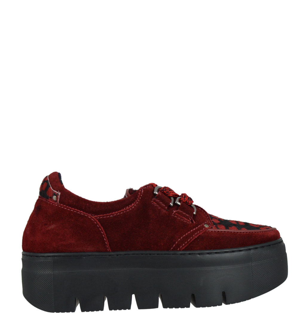 Soia fish creepers